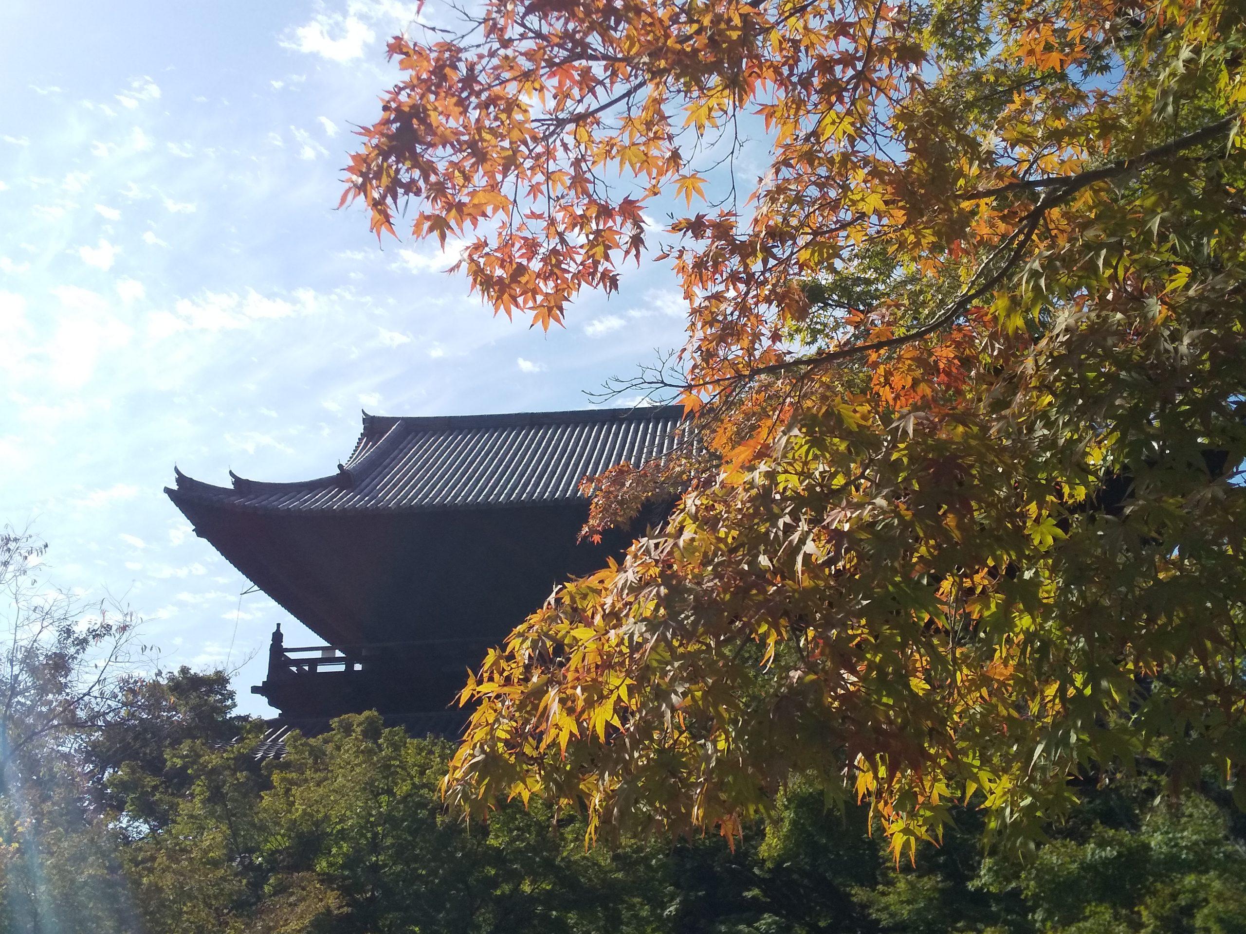 南禅寺 三門と紅葉